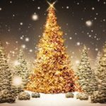12 Days and 12 Ways to Get You Into the Christmas Spirit!